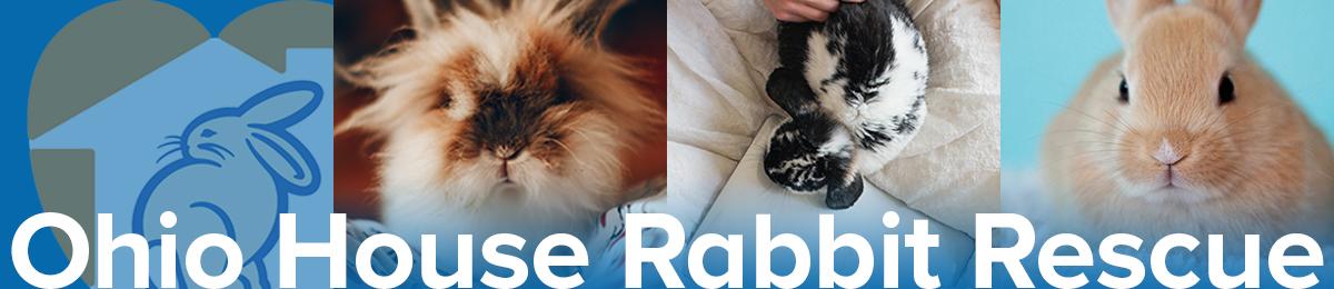 Ohio House Rabbit Rescue -