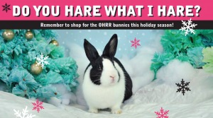 Stop by OHRR and Select a Bunny from the Tree to Shop for this Holiday Season. Our 'Do You Hare What I Hare?' Event will be Sunday, December 15th.